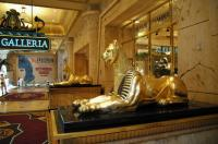 Two expensive hotel, Las Vegas Travel Guide