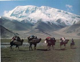 Silk Road(Tea-Horse Road), China Culture