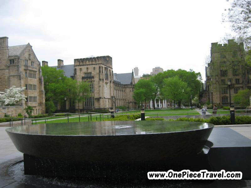 Yale University, United States is Hong New Haven